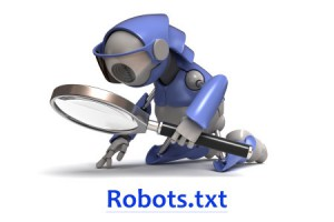 robots.txt iit2b