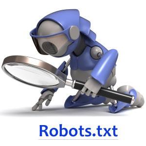 Robots.txt: для чего он нужен?